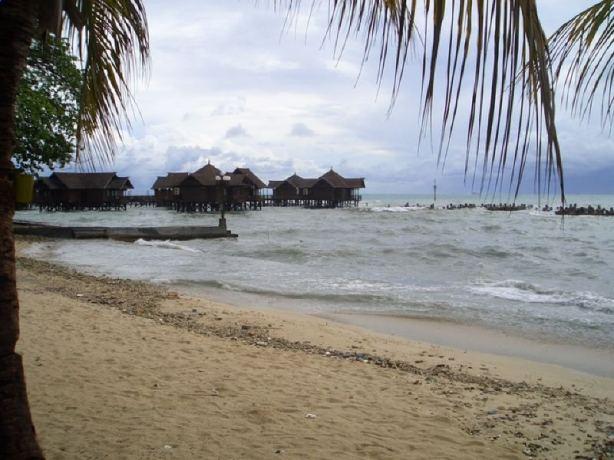 Kotej di Pulau Ayer, Kepulauan Seribu